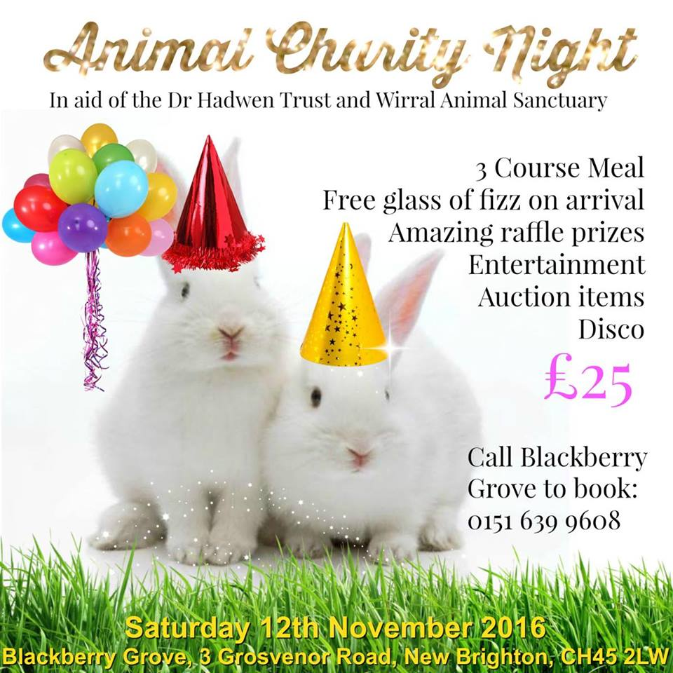 animal-charity-night